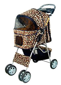 Take kitty on a walk with you on the wild 